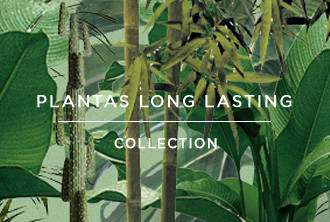 Long Lasting Plants collection | Crimons